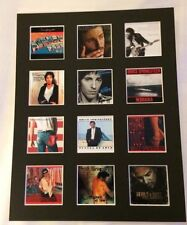 "BRUCE SPRINGSTEEN 14"" BY 11"" LP DISCOGRAPHY COVERS PIC MOUNTED READY TO FRAME"