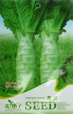30 Original Pack Seeds Asparagus Lettuce Seeds Lettuce Organic Vegetable C121