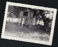 Vintage Antique Photograph Little Children Standing By Puppy Dog in Dog House