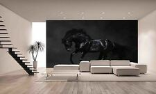 Black Horse Wall Mural Photo Wallpaper GIANT DECOR Paper Poster Free Paste