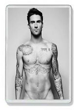 Adam Levine 003 (Maroon 5) Fridge Magnet *Great Gift!*