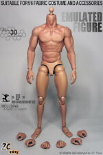 ZC Toys 1/6 Scale 3.0 Muscular male Figure Body With Seamless Arms IN STOCK