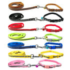 Nylon Dog Puppy Pet Collar & Walking Leash Set Various Colors for Many Breeds