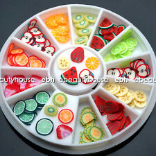 240 Pcs Fruit Slice Nail Art Decoration + Wheel #047A