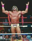 WWE ULTIMATE WARRIOR OFFICIAL 8X10 LICENSED PHOTO FILE PHOTO 2