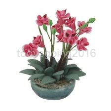 Clay Orchid & Pot Dolls House Miniature Flower Plant Fairy Garden Accessory