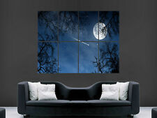 FULL MOON NIGHT SKY SHOOTING STAR TREES NATURE LARGE PICTURE POSTER GIANT