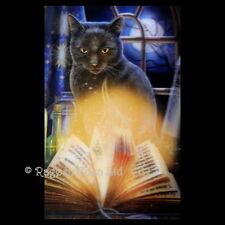 *BEWITCHED* Goth Fantasy Black Cat Art 3D Postcard By Lisa Parker (15x10cm)