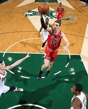 Mike Dunleavy Unsigned 8x10  Chicago Bulls (2)