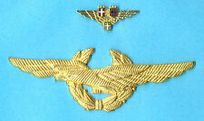 SAS Scandinavian Airlines Pilot Wings Badge