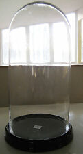 """20"""" Tall x 10"""" W Glass Dome Black Display~Taxidermy~Collectible~Plant~Clock~Doll"""