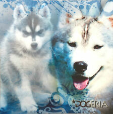 Siberian Husky Magnetic Picture / Coaster  Large 50 mm X 50mm Size