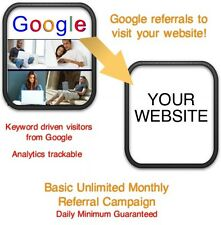 Website Visitors- Unlimited Monthly Google Referrals/Visitors to your website