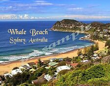 Australia - Sydney - WHALE BEACH - Travel Souvenir FLEXIBLE Fridge MAGNET