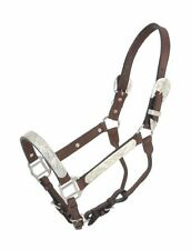 YEARLING Royal King Silver Show Halter Dark Leather Lead w/ Chain Small Horse