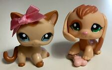 ✨Littlest Pet Shop✨ RARE/HTF Beagle #1664 & Shorthair Cat #1024 w/Accessories