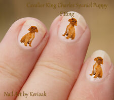 Cavalier King Charles Spaniel Sitting,  24 Dog Nail Art Stickers Decals