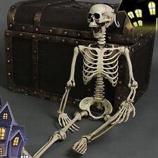 Halloween Scary Skull Man Bone Life Size Actually Party Human Skeleton Decor Hot