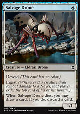MTG 4x SALVAGE DRONE - PARASSITA DI RECUPERO - BFZ - MAGIC
