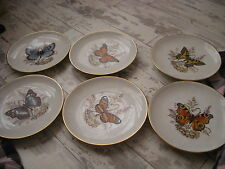 SET OF 6 VINTAGE BUTTERFLY LUNCHEON PLATES...WESTERN GERMANY..STUNNING...SEE