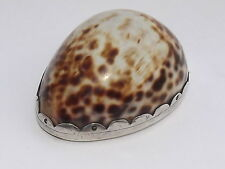 SPLENDID ANTIQUE 18th CENTURY SOLID SILVER MOUNTED COWRY SHELL SNUFF BOX c1790