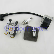 Replace STIHL FS38 FS55 FC55 FS45 FS46 KM55 HS45 Ignition coil Carburetor filter