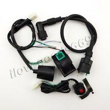 Wiring Loom Harness Kill Switch Ignition Coil CDI For 50cc-160cc SSR Thumpstar