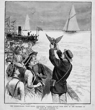 CARRIER PIGEONS DISPATCHING NEWS ABOUT THE INTERNATIONAL YACHT RACES SLOOP SAIL