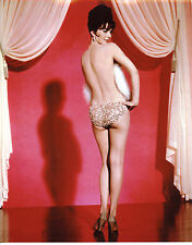 Natalie Wood Gypsy Leggy 8x10 photo T2556