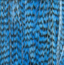 Lot of 12 Long Striped Blue Donna Bella Milan Feather Extensions