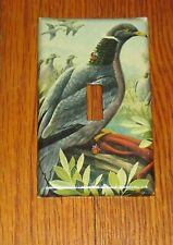 BANDTAIL PIGEON BIRD WILD ANIMAL LIGHT SWITCH COVER PLATE