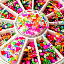 12 Mixed Colors Nail Art Acrylic Powder Particle Crushed Shell+Wheel #SB-006
