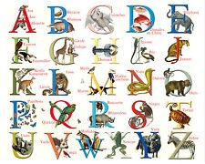 CARTE à encadrer alphabet ABC des ANIMAUX XIXème vintage rétro ancien  24 x 30
