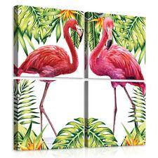 SET (4 teilig) Leinwandbild Wandbild Foto Flamingo Natur Pflanzen Grün 11119 S20