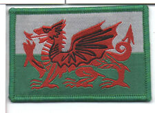 Wales Large Flag Iron On / Sew On Patch Badge Appliqué , Baner Cymru