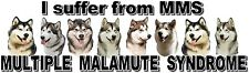 """I Suffer from  MULTIPLE  MALAMUTE  SYNDROME"" Dog Car Sticker by Starprint"