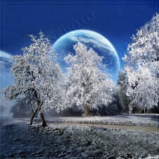 Christmas/Winter 10'x10'Computer-painted Scenic Photo Background Backdrop BHF078