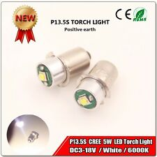 2X RYOBI 3-18 VOLT DC Flashlight Replacement P13.5S 5W LED Positive Earth Bulb