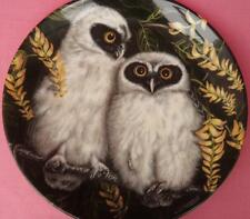 WEDGWOOD SPECTACLED OWL CHICKS PLATE DICK TWINNEY THE BABY OWLS SERIES