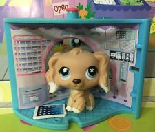 Littlest Pet Shop #568 Sandy Cocker Spaniel Dog Blue Eyes Rare!!