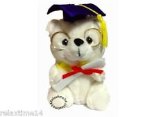 "Graduation Teddy BEAR  6"" Color white with blue cap"