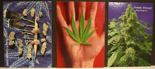 Inline Hemp Trading Card Set 1996 series 2 Full Set with SP-3 NEW IN BOX