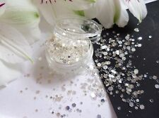 Nail Art Chunky *SnoW* White Silver Shine Hexagon Glitter Spangle Mix Pot Tips