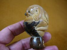 (TNE-OTT-338A) brown sea Otter Nutria TAGUA NUT Figurine Carving Vegetable ivory