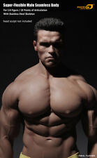1/6 Phicen hunk M34 muscular male action figure + two XL size genitalia UK stock
