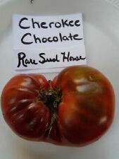 Cherokee Chocolate Tomato Seeds! 1 POUND Heirloom! Comb. S/H See our store!