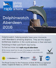 RSPB Pin Badge   Dolphin   DolphinWatch Aberdeen 2016 [00931]