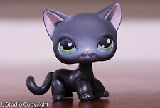 Littlest Pet Shop LPS #994 Black Shorthair Cat Blue Eyes