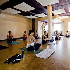 720W Electric Ceiling Radiant Heaters Hot Yoga Studio Heating Solution