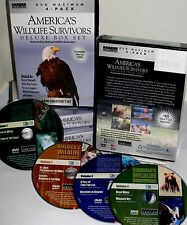 America's Wildlife Survivors 4 DVD Box Educational Wolf Bears Dolphins Eagles